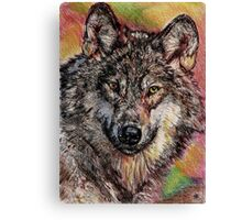 Portrait of a Gray Wolf Canvas Print
