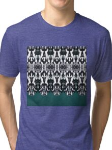 Tribal Feathers Tri-blend T-Shirt