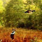 Freedom flighter ( the one that got away) by Alan Mattison