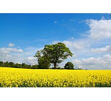 A Rural Setting Photographic Print