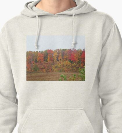 Fall in Michigan Pullover Hoodie