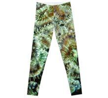 Green Sea Anemone  Leggings