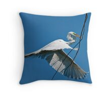 Oversize Air Delivery Throw Pillow