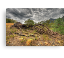 The Weak Will Fall - Glen Davis, Capertee Valley - The HDR Experience Canvas Print