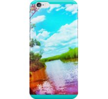 Colorful Everglades iPhone Case/Skin