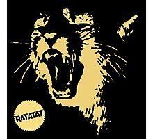 Ratatat Classics Photographic Print