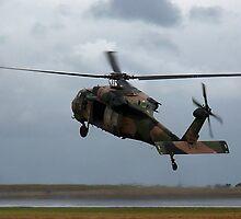 Blackhawk Hover by Bairdzpics