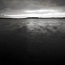 A Sunset in Black and White by Avena Singh
