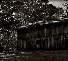 Country Barn - Berkeley Springs by MSParker