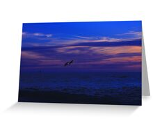 Syncronized Pelican diving Greeting Card
