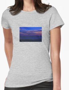 Syncronized Pelican diving T-Shirt