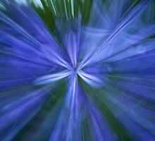 Abstract flower 2 by Anna Calvert