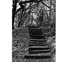 Wooden Steps - Daisy Nook Photographic Print
