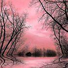 Roots 2 by Elfriede Fulda