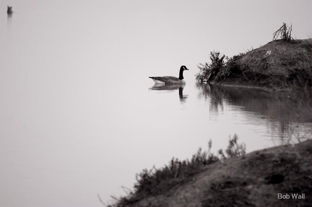 Foggy Calm by Bob Wall