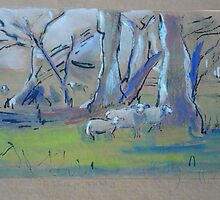 Sheep country by Frances Henke