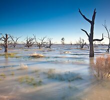 Lake Menindee 001 by David  Lange