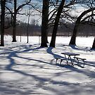 No Picnic Today by Brian Gaynor