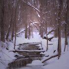 A lonely winter stream by Sally Kady