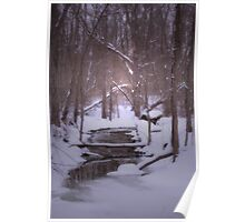 A lonely winter stream Poster