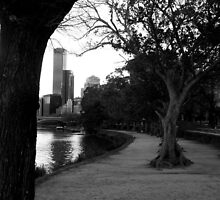 City by the water by Rozita