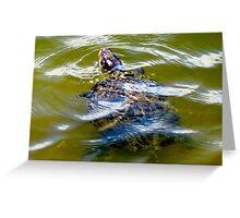 Pond turtle Greeting Card