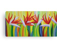Colorful birds of paradise  Canvas Print