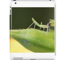 Small Red Eyed Insect iPad Case/Skin