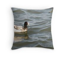 One Strange Looking Coot. Throw Pillow