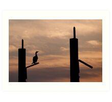 Waiting - Cormorant at sunrise Art Print