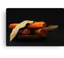 wooden spoon and cinnamon Canvas Print
