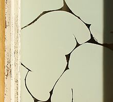 Cracked Paint by Austin Dean