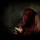 social moments III by ArtX