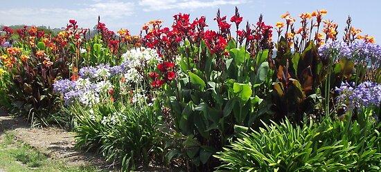 Penguin road-side flower display by gaylene