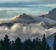A Wakatipu Movement by Larry Lingard-Davis