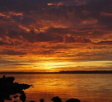 Tuggerah Lakes Sunrise. 2 by Warren  Patten