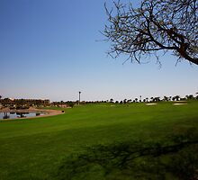 Hole 14 Par 5 by TabaGolf