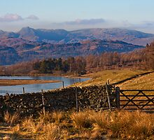 Wise Een tarn and the Langdale Pikes by Shaun Whiteman