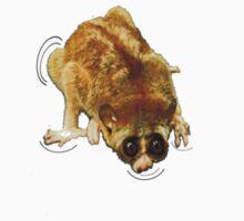 Loris Lemur on my Shoulder by Darren Stein