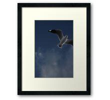 Oz, 002 Framed Print