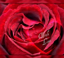 Red Rose with LOVE by AnnDixon