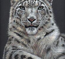 Snow Leopard Portrait by Nicole Zeug