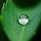 Waterpearl by RosiLorz