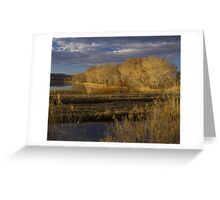 Golden Hour at the Bosque del Apache Greeting Card