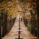 Autumn in Madrid by a Couple of Photos