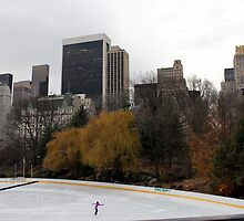 Ice skater in Central Park by JoanneF24