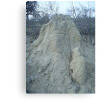 Termite Mound, Limpopo, South Africa Canvas Print