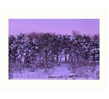 Winter's Beauty Art Print