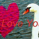 Message of love by ♥⊱ B. Randi Bailey