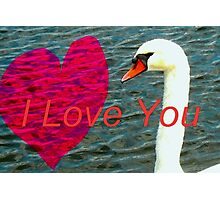 Message of love Photographic Print